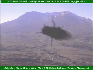 Screen capture of the Mt. St. Helens volcanocam image with a fly covering much of the image.