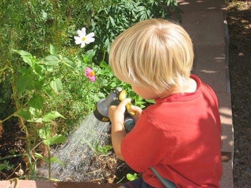 gardenhelper.jpg