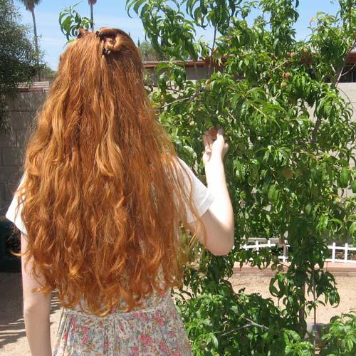 hairb4(4-09).jpg